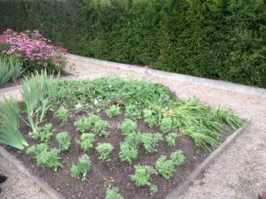 Picture showing the flower bed after repairs